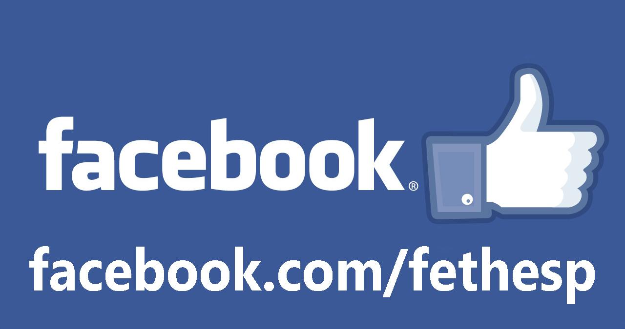 Curta a página da FETHESP no Facebook!